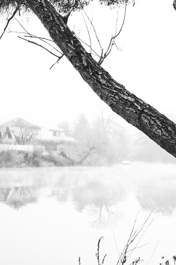 Anthony Meyer Photography